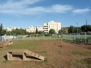 Dog Playground, Modiin, Israel, November 2011