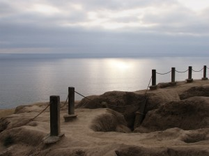 Torrey Pines State Reserve, California, USA, May 2007